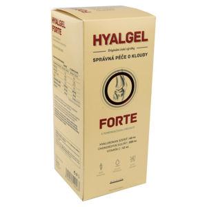 Hyalgel forte pomeranč 500ml - II. jakost